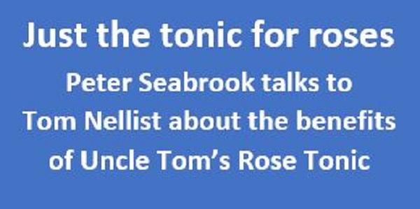 Uncle Toms